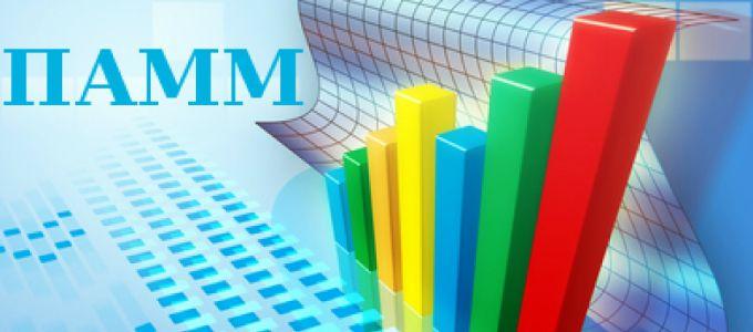 6 способов избежать потерь при работе с ПАММ-счетами