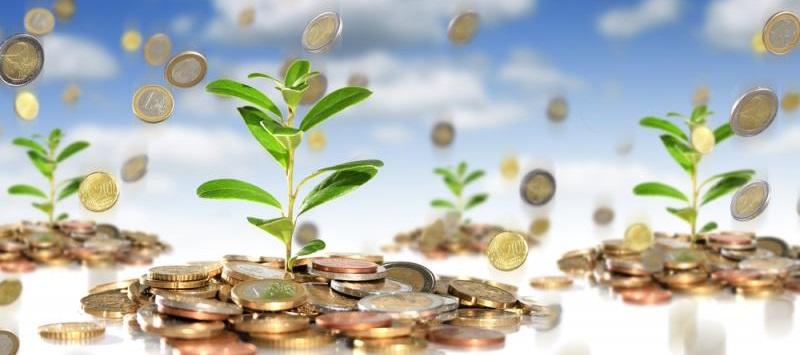 5 основных правил инвестирования - Как заставить деньги работать на себя